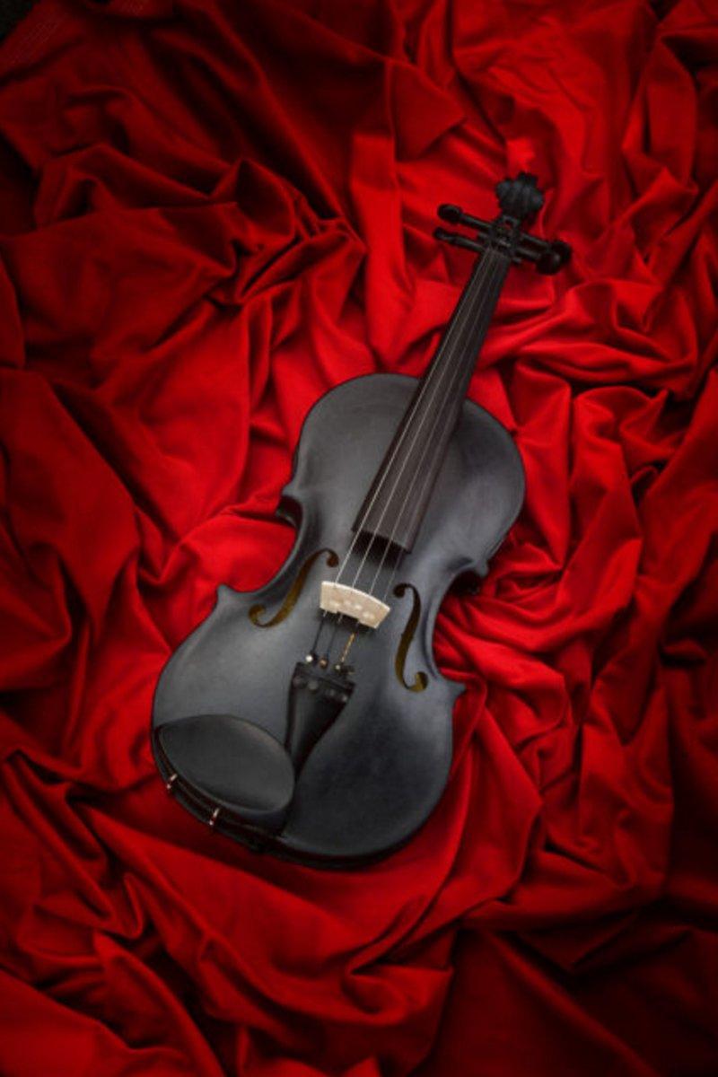 perierga.gr - Βιολί από μαύρη πέτρα!