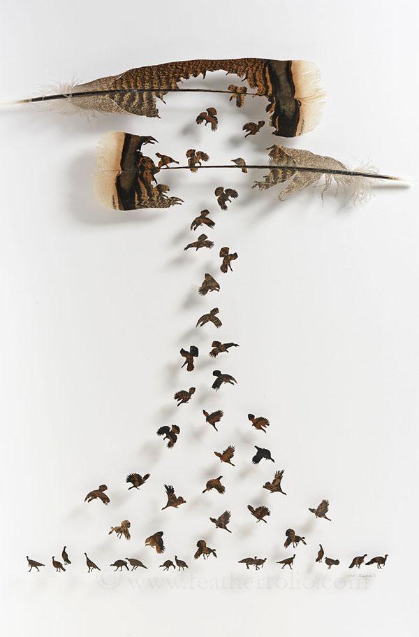 Perierga.gr-Περίεργα έργα τέχνης από φτερά πτηνών