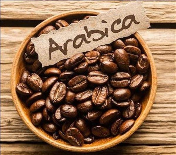 perierga.gr - Διάβασαν το DNA του δημοφιλέστερου καφέ στον κόσμο!
