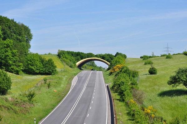 perierga.gr - Γέφυρες αποκλειστικά για ζώα!