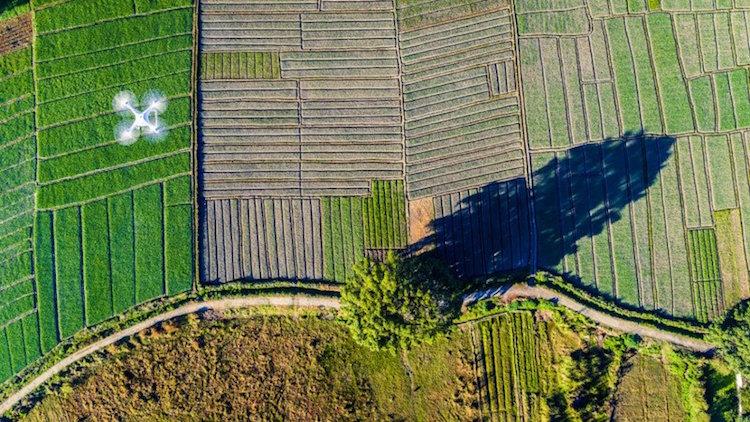perierga.gr - Υπέροχες εικόνες από διαγωνισμό αεροφωτογράφισης!