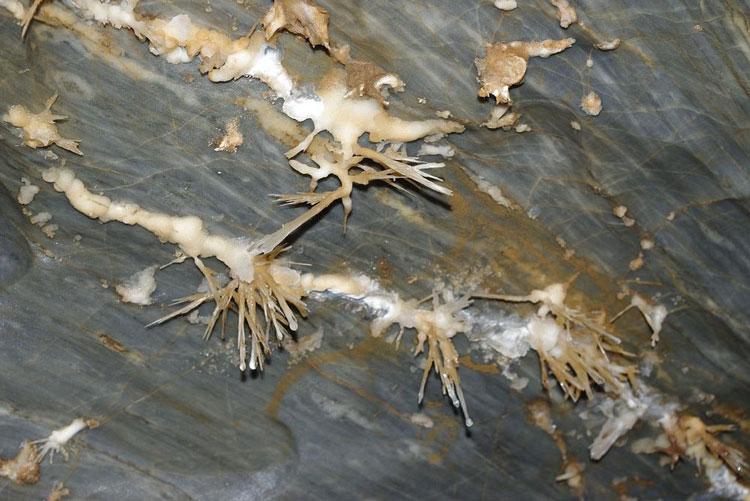 perierga.gr - Σπάνιο σπήλαιο αραγωνίτη στον κόσμο!