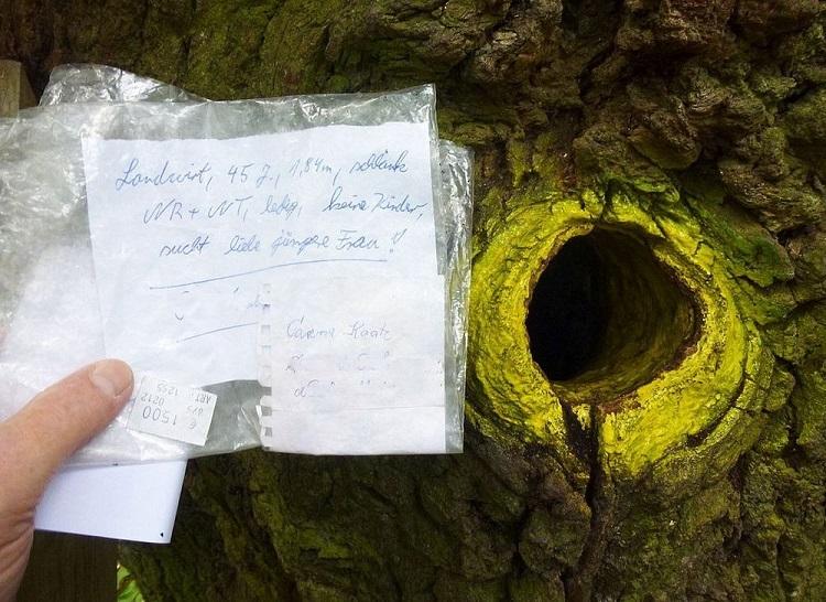 perierga.gr - Δέντρο με... ταχυδρομική διεύθυνση!