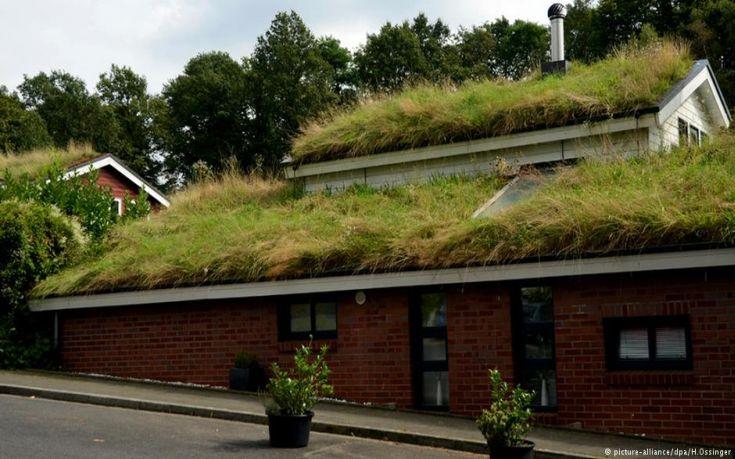 perierga.gr - Η νέα τάση στην Σκανδιναβία είναι οι κήποι στις στέγες!