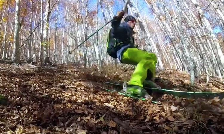 perierga.gr - Κάνοντας σκι πάνω στα... φύλλα του δάσους!