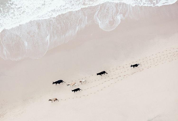 perierga.gr - Εναέριες εικόνες από την Αφρική κόβουν την ανάσα!