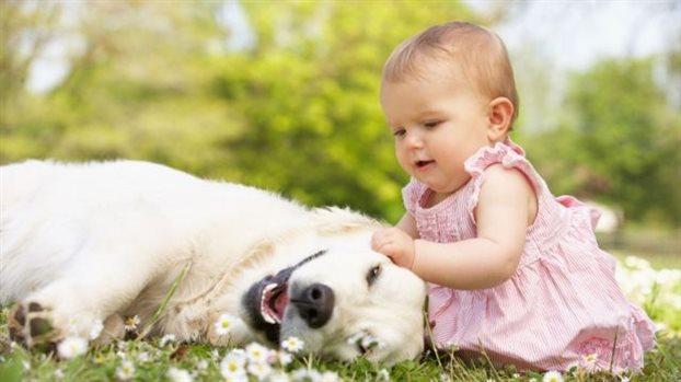 perierga.gr - Ο σκύλος κάνει καλό στην υγεία!