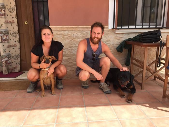 perierga.gr - Ταξιδέψτε στον κόσμο με αντάλλαγμα την φροντίδα... κατοικιδίων!
