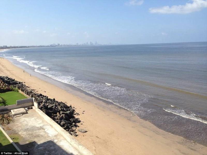 perierga.gr - Απίστευτη μεταμόρφωση παραλίας από χωματερή σε καθαρή ακτή!