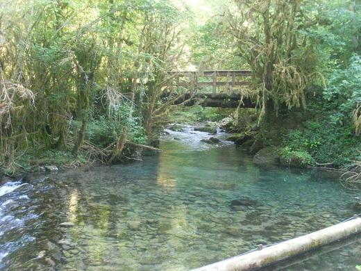 perierga.gr - Gourgue d'Asque: Ο μικρός Αμαζόνιος των Πυρηναίων!