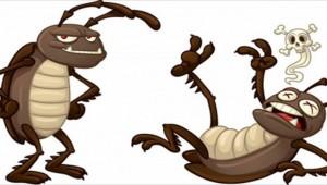 Πράγματα που δεν (θα θέλατε να) ξέρετε για τις κατσαρίδες!