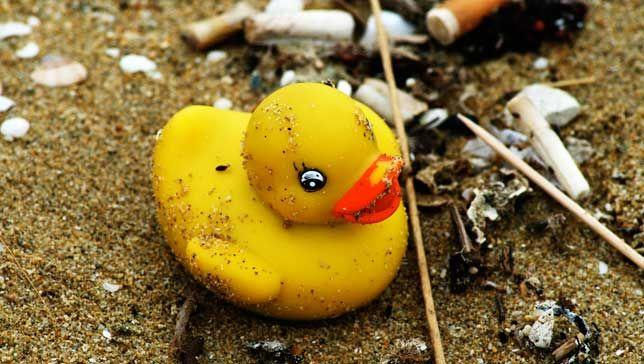 perierga.gr - Τι μας διδάσκουν 28.000 χαμένα παπάκια στη θάλασσα για τους ωκεανούς μας;