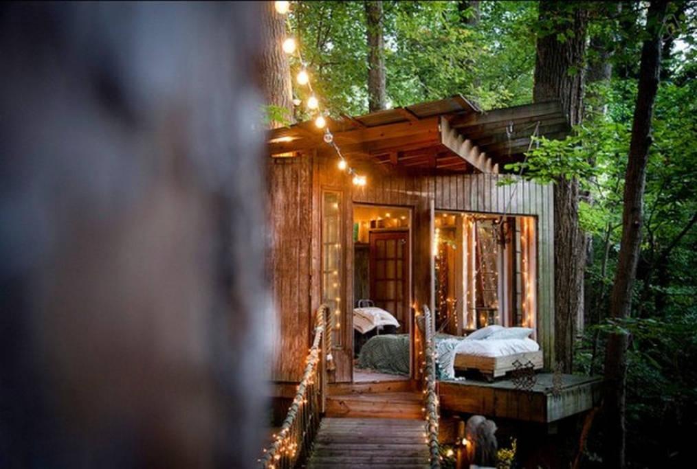 perierga.gr - Δεντρόσπιτο το πιο δημοφιλές κατάλυμα στο Airbnb