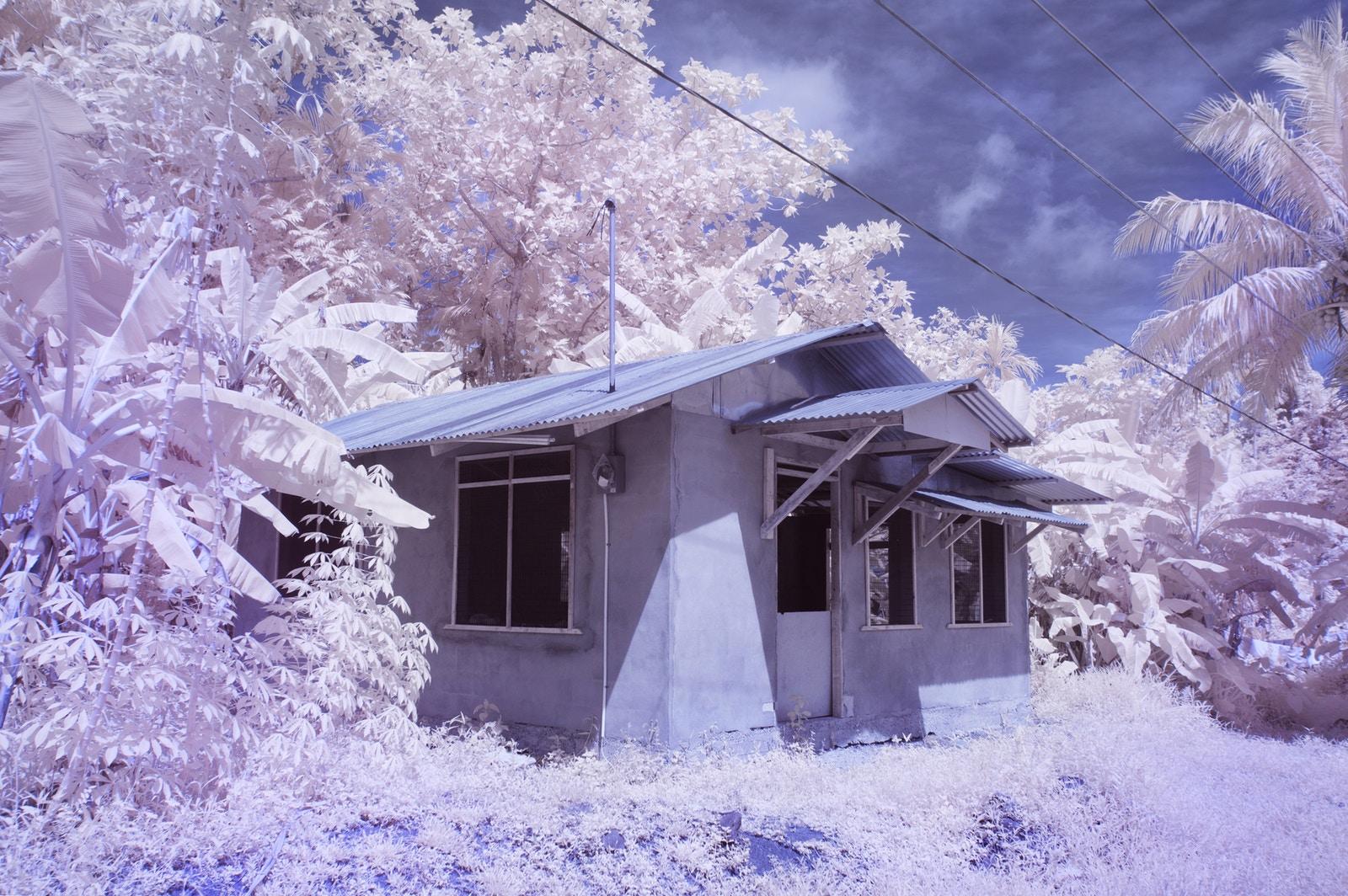 perierga.gr - Το νησί της αχρωματοψίας!