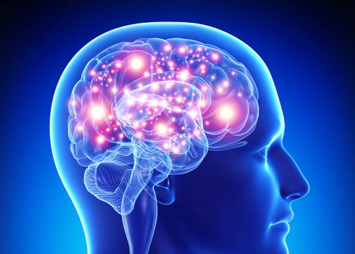 perierga.gr - Τι κοινό έχουν ο ανθρώπινος εγκέφαλος, το διαδίκτυο και το σύμπαν;