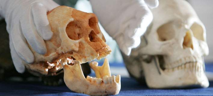 perierga.gr - Πιο παλιός ο Homo Sapiens από ό,τι υπολόγιζαν!