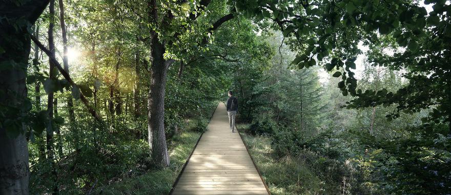 perierga.gr - Απίθανη εξέδρα παρατήρησης πάνω από δάσος!