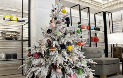 Perierga.gr - Τα πιο...ιδιαίτερα Χριστουγεννιάτικα δέντρα του 2017!