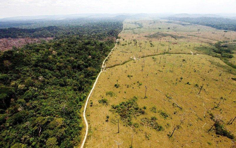 H αποκαρδιωτική αποψίλωση των δασών στην Αϊτή | Perierga.gr