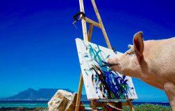 Perierga.gr - Pigcasso: Ένας...διαφορετικός καλλιτέχνης με έργα αξίας χιλιάδων δολαρίων