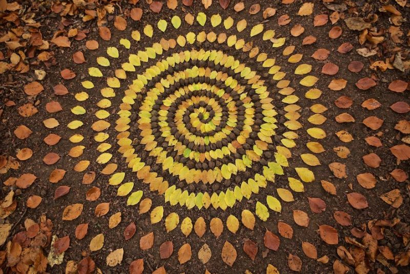 Perierga.gr - Έργα τέχνης με... πρώτη ύλη τη φύση!