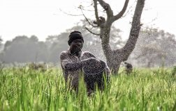 Perierga.gr - Οι νικήτριες φωτογραφίες του National Geographic για το 2017