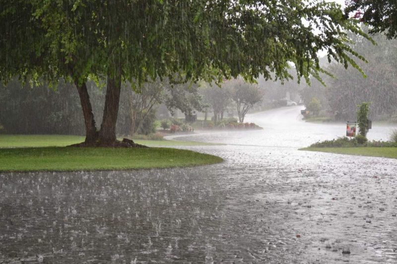 Perierga.gr - Τα πιο βροχερά μέρη του πλανήτη