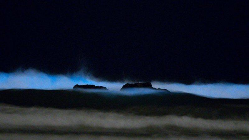 Perierga.gr - Το φαινόμενο των απόκοσμων μπλε κυμάτων του Σαν Ντιέγκο