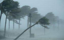 Perierga.gr - Πώς και γιατί οι τυφώνες έχουν ανθρώπινα ονόματα