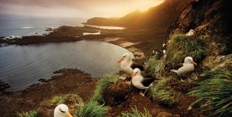 Όμορφα και άγρια μέρη στον κόσμο που ξεχωρίζει το National Geographic