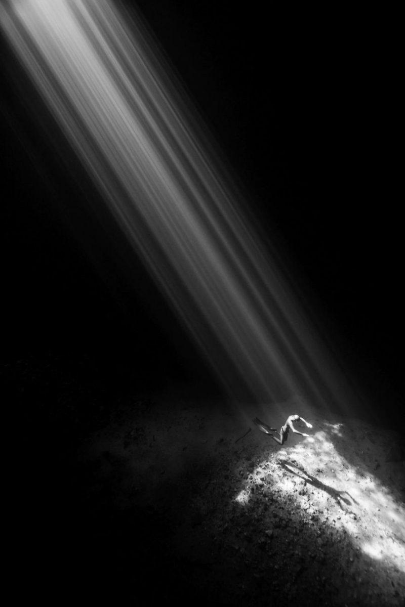 Perierga.gr - Οι καλύτερες υποβρύχιες φωτογραφίες για το 2018