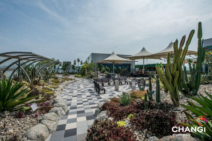 Perierga.gr - Μια βόλτα στο καλύτερο αεροδρόμιο του κόσμου