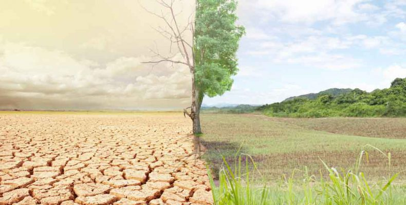Perierga.gr - Economist: Ο κόσμος χάνει τη μάχη με την κλιματική αλλαγή