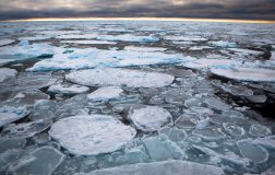 Perierga.gr - Λιώνει ο παλαιότερος και πιο συμπαγής πάγος της Αρκτικής
