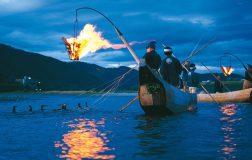 Perierga.gr - Η αρχαία ιαπωνική μέθοδος ψαρέματος στην οποία χρησιμοποιούνται πουλιά