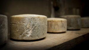 Perierga.gr - Εντοπίστηκε το αρχαιότερο τυρί του κόσμου