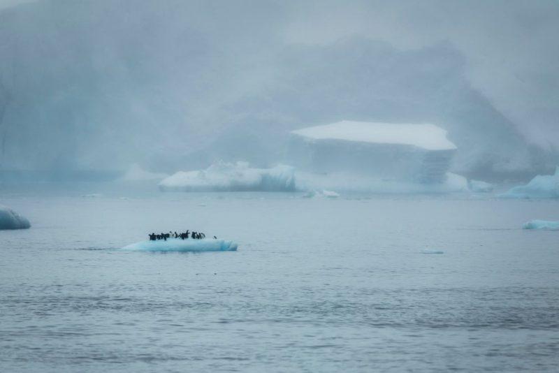 Perierga.gr - Earth Photo: ένας διαγωνισμός φωτογραφίας με θέμα τη γη - Οι κορυφαίες συμμετοχές