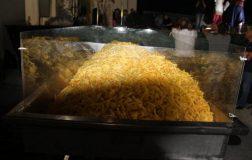 Perierga.gr - Για ρεκόρ Γκίνες στη Νάξο: 625 κιλά τηγανιτές πατάτες σε 8 ώρες