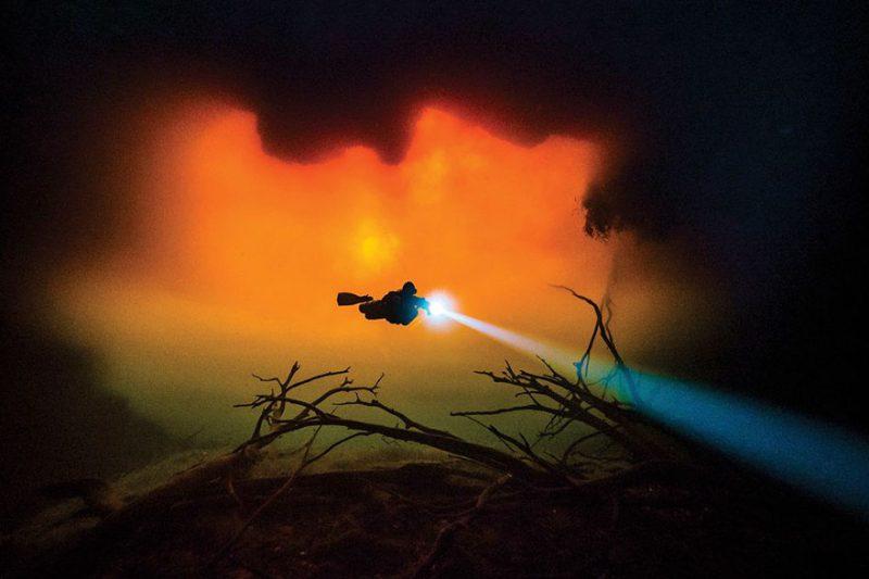 "Perierga.gr - Οι top συμμετοχές στο διαγωνισμό υποβρύχιας φωτογραφίας του ""Scuba Diving"""