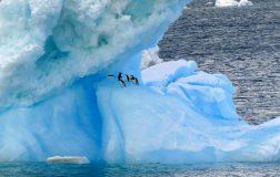 Perierga.gr - Περίεργα στοιχεία για την Ανταρκτική