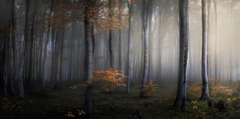 Perierga.gr - Εντυπωσιακές εικόνες από το διαγωνισμό πανοραμικής φωτογραφίας