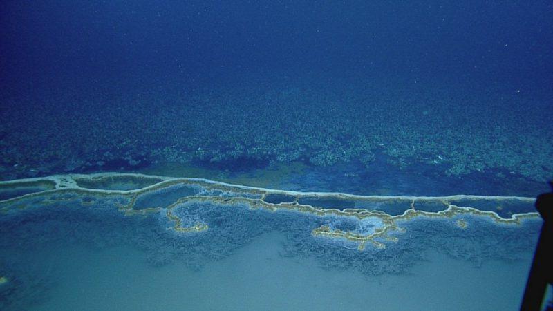 Perierga.gr - Πισίνες κάτω από τη θάλασσα...