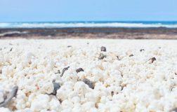 Perierga.gr - Μια παραλία με βότσαλα σε σχήμα ποπ κορν!