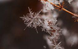Perierga.gr - Στοιχεία που δεν ξέρουμε για το χιόνι!