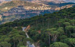 Perierga.gr - Όμορφες φωτογραφίες από το Λίβανο