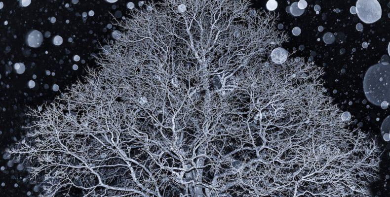 Perierga.gr - Οι καλύτερες φωτογραφίες τοπίων για το 2018