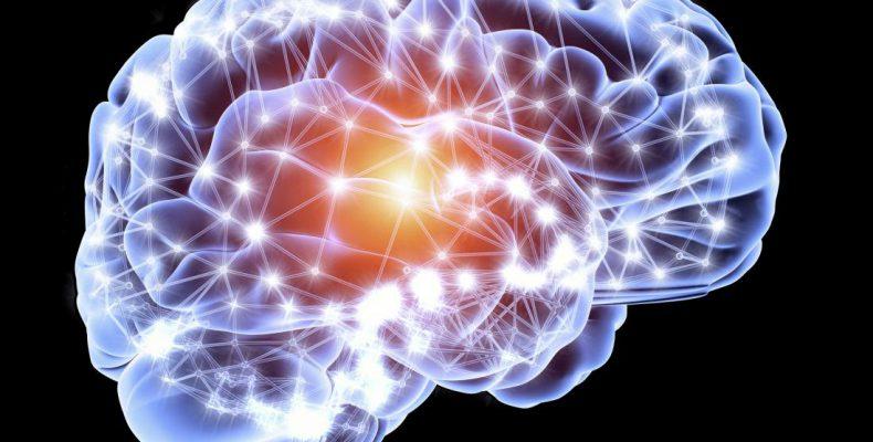 Perierga.gr - Παράγουμε νέα εγκεφαλικά κύτταρα μέχρι την ηλικία των 90