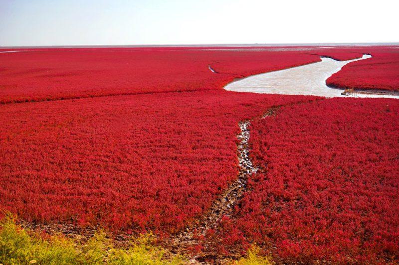 Perierga.gr - Μερικά από τα πιο πολύχρωμα μέρη του πλανήτη