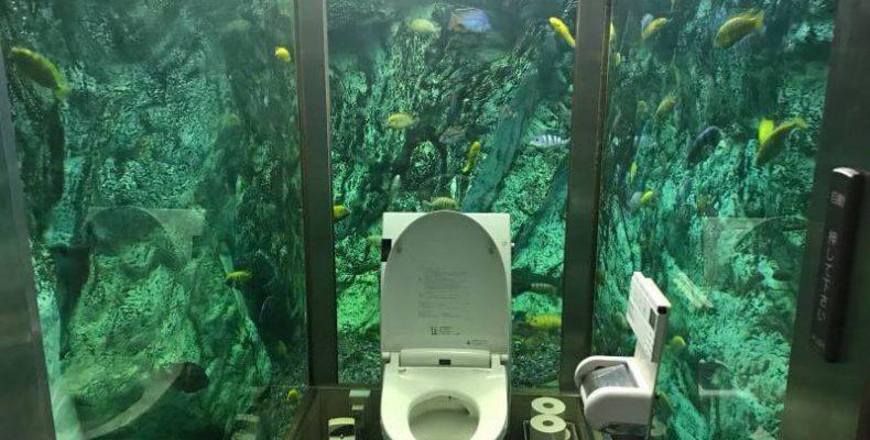 Perierga.gr - Μια καφετέρια με τουαλέτα-ενυδρείο!
