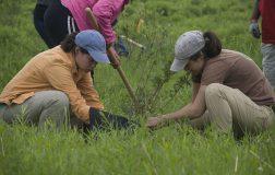 Perierga.gr - Μαθητές πρέπει να φυτεύουν δέντρα για να αποφοιτήσουν από το σχολείο